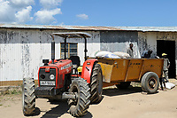 ZAMBIA Barotseland Mongu, farmers doing paddy farming in the flood plains, tractor transport rice bags to ricemill / SAMBIA Barotseland , Stadt Mongu , in der Sambesi Flussebene wir Reis abgebaut, Traktor einer Reismuehle