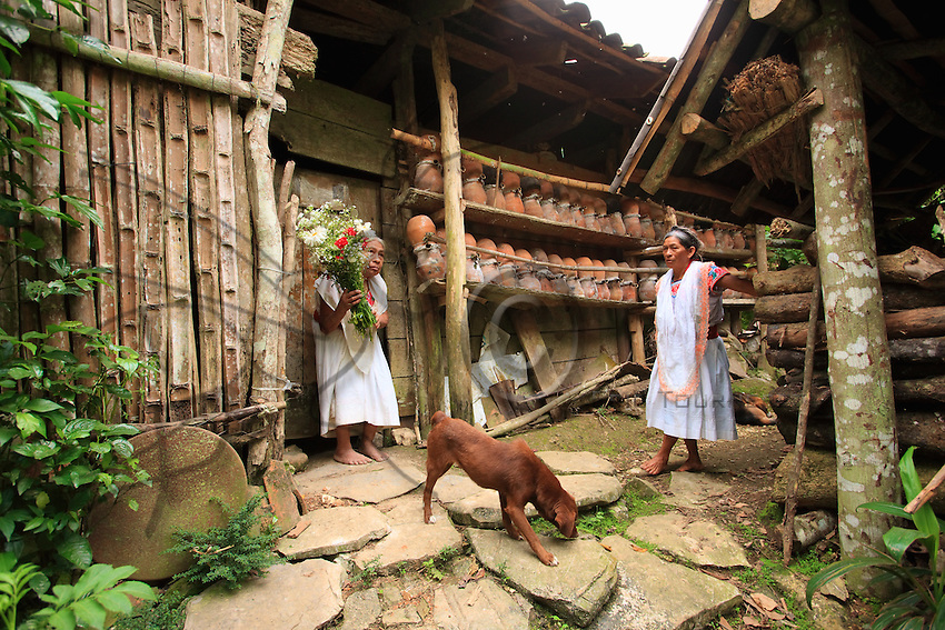 In Tepetisnda, a woman in tradition Nahuatl dress brings flowers to Maria Rosa..Kept by the women since time immemorial in earthen pots standing against the walls of the houses, the stingless trigona (trigona scaptotrigona) provides the perfect example of sedentary apiculture practiced for self-sufficiency.