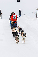 Mats Pettersson on Cordova St. hill during the Anchorage start day of  Iditarod 2018<br /> <br /> Photo by Trent Grasse /SchultzPhoto.com  (C) 2018  ALL RIGHTS RESERVED