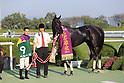 Horse Racing : KBS Kyoto Sho Fantasy Stakes at Kyoto Racecourse