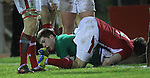 Scrum half Luke McGrath dives over to score Ireland's first try of the match..Under 20 Six Nations.Wales v Ireland.Eirias - Colwyn Bay.01.02.13.©Steve Pope