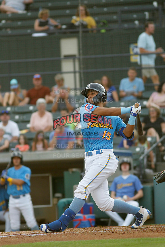 Myrtle Beach Pelicans catcher Jhonny Pereda (15) at bat during a game against the Carolina Mudcats at Ticketreturn.com Field at Pelicans Ballpark on June 15 , 2018 in Myrtle Beach, South Carolina. Carolina defeated Myrtle Beach 4-2. (Robert Gurganus/Four Seam Images)