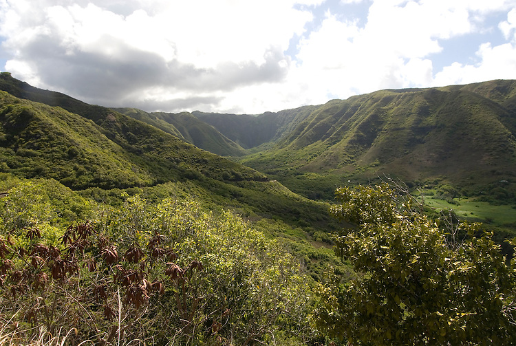 Hawaii: Molokai, scenic view of Halawa Valley..Photo himolo126-72440.Photo copyright Lee Foster, www.fostertravel.com, lee@fostertravel.com, 510-549-2202