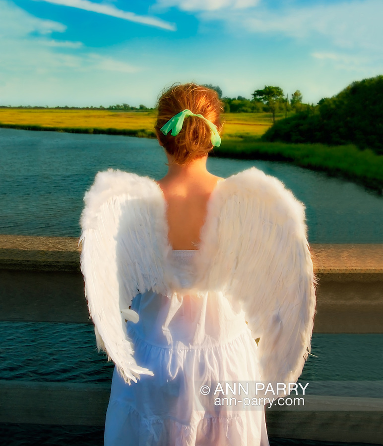Long Island Angel, dusk at Levy Park, Long Island, New York. <br />