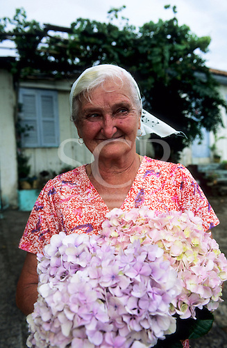 Rio Grande do Sul State, Brazil. Portrait of a smiling elderly woman holding a bunch of hydrangea flowers.