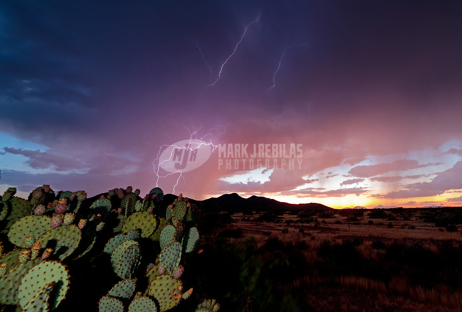 Lightning, storm, storm chasing, storm chaser, Arizona, weather, clouds, desert, mountains, rain, monsoon, cactus, sunset