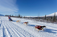 Joan Klejka during the 2015 Junior Iditarod start along the Denali Highway <br /> <br /> <br /> <br /> (C) Jeff Schultz/SchultzPhoto.com - ALL RIGHTS RESERVED<br />  DUPLICATION  PROHIBITED  WITHOUT  PERMISSION