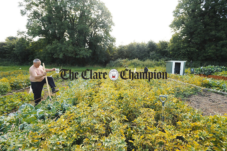 Flan Markham working on his allotment at the Clare Environmental Educational centre, Cappahard, Tulla road, Enis. Photograph by John Kelly.