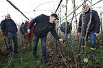 Foto: VidiPhoto<br /> <br /> DRIEL &ndash; Bessentelers krijgen maandag bij teler G. Vos in Driel een demonstratie van snoeien van rode bessen en kruisbessen.