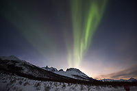 The aurora borealis swirls over mount Snowden n the Brooks Range mountains, Arctic, Alaska.