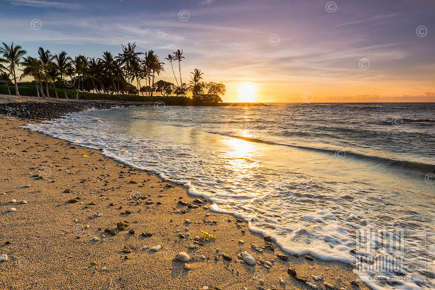 At sunset, a wave touches the shore strewn with coral and shells, Pauoa Bay, Kohala Coast, Big Island.