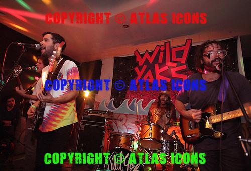 WILD YAKS, LIVE, 2012, TAMARA LEE