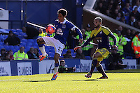 Pictured: Ashley Jazz Richards of Swansea (R) and Steven Pienaar of Everton. Sunday 16 February 2014<br />
