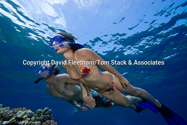 A couple (MR) free diving.  Hawaii.