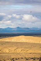 Landscape of the Great Kobuk Sand Dunes, Kobuk Valley National Park, Alaska.