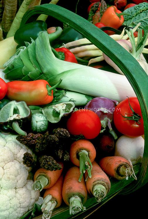 Harvested vegetables, carrot, leek, orange red and green sweet bell peppers, cauliflower, parsnips, kohlrabi, kale, asparagus, beans, kohlrabi, kale in green basket, freshly picked from the backyard garden