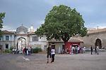 La cour de l'&eacute;v&ecirc;ch&eacute;<br /> <br /> cadre : festival Uzes danse 2014<br /> Ville : Uzes<br /> Date : 13/06/2014