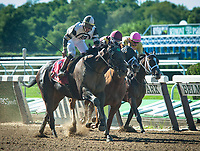 ELMONT, NY - JULY 7: Limousine Liberal #1, ridden by Jose Ortiz, wins the G3 Belmont Sprint Championship at Belmont Park in Elmont, NY (Photo by Sophie Shore/Eclipse Sportswire/Getty Images)