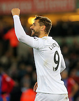 Fernando Llorente of Swansea City celebrates his winning goal, making the score 5-4 during the Premier League match between Swansea City and Crystal Palace at The Liberty StadiumSwansea, Wales, UK. Saturday 26 November 2016