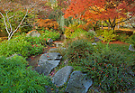 Jackson County, OR: Autumn in the Japanese Garden of Lithia park in Ashland