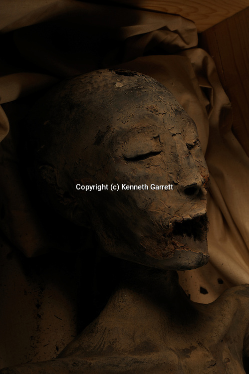 mm7864; 18th Dynasty; New Kingdom; Egypt; The Egyptian Museum; Cairo; Mummy, KV21, unknown royal mummy