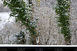 Pix: Shaun Flannery/shaunflanneryphotography.com...COPYRIGHT PICTURE>>SHAUN FLANNERY>01302-570814>>07778315553>>..29th November 2010.........Snowfall in the United Kingdom, November 2010..A Heron sits at the side of the frozen canal at Sprotbrough Lock.