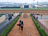 10-28-17 Breeders Cup Morning Workouts