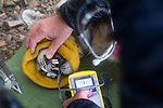 Snow Leopard (Panthera uncia) veterinarian, John Ochsenreiter, monitoring vital signs during collaring of male, Sarychat-Ertash Strict Nature Reserve, Tien Shan Mountains, eastern Kyrgyzstan
