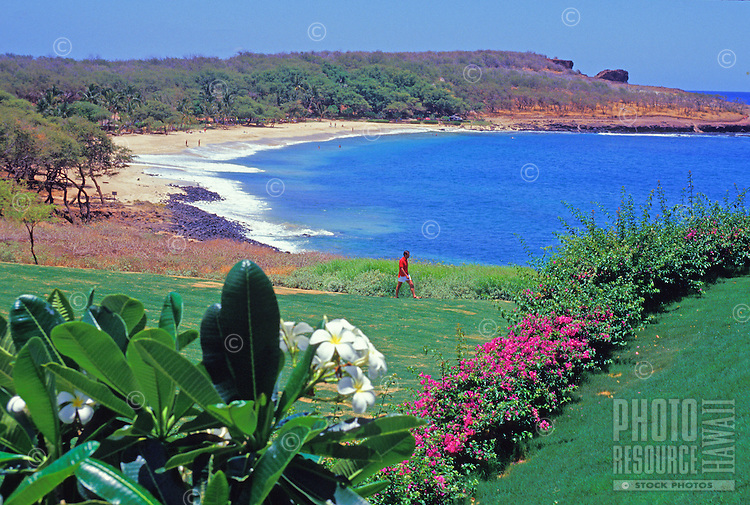 Man walks near tropical garden at Manele Bay, Lanai, Hawaii