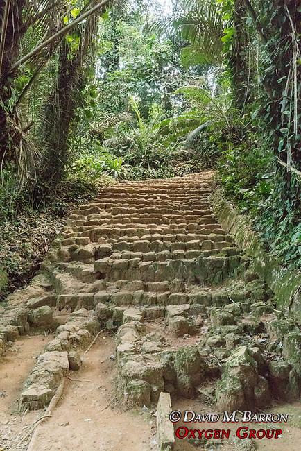Stone Walkway, Entebbe Botanical Gardens