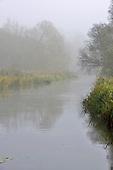 Early morning autumn mist along the River Test at Longparish, Hampshire.