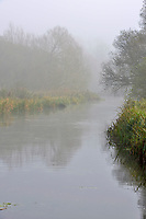 Early morning autumn mist along the River Test at Longparish, Hampshire.