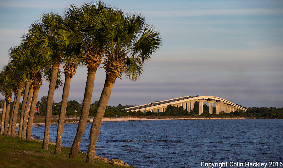 PORT ST JOE, FLA. 4/19/16-Palm trees line U.S. Highway 98 near where it crosses the Gulf County Canal via the George G Tapper Bridge in Port. St. Joe, Fla.<br /> <br /> COLIN HACKLEY PHOTO