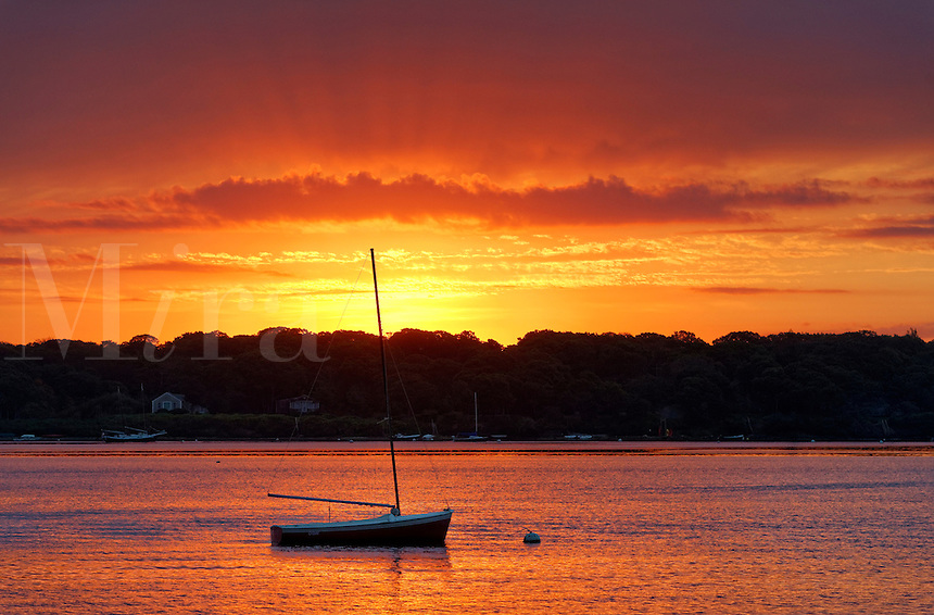 Sunrise sailboat, the Lagoon, West Tisbury, Martha's Vineyard, Massachusetts, USA