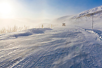 Wind blowing snow on the Steese highway in Eagle summit, minus 20 degrees.