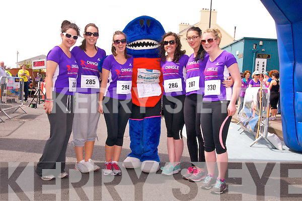 Rachel Downes (Clare), Mary Ruth Davoren (Galway), Lisa Fitzgerald (Limerick), Anna O'Connor (Kenmare), Caoimhe Doyle (Killarney) and Kayleith Fitzpatrick (Galway) with Sharky enjoying the Dingle Women Marathon on Saturday afternoon.