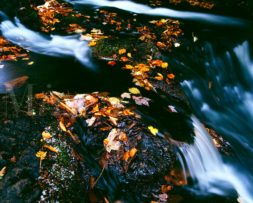 Little Carp River Porcupine Mountains Wilderness State Park Michigan