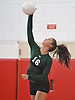 Sophie Dandola #16 of Seaford serves during a Nassau County varsity girls volleyball match against host Mineola High School on Thursday, Sept. 22, 2016. She recorded 18 kills and nine aces in Seaford's 3-1 win.