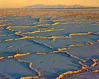 Bonneville Salt Flats, Utah   Patterns in salt formations  Near Great Salt Lake