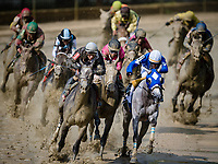 BALTIMORE, MD - MAY 19: Actress #10 (black hat), ridden by Nik Juarez coming around the turn for home, in between Shimmering Aspen #1, and Tapa Tapa Tapa #2, in which he wins the Black Eyes Susan Stakes, on Black-Eyed Susan Day at Pimlico Race Course on May 19, 2017 in Baltimore, Maryland.(Photo by Douglas DeFelice/Eclipse Sportswire/Getty Images)