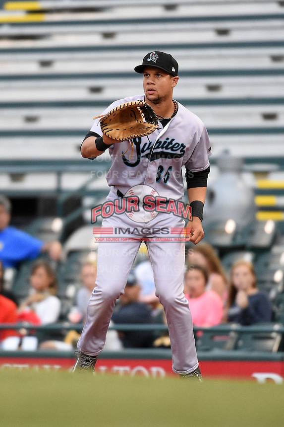 Jupiter Hammerheads first baseman Viosergy Rosa (35) waits for a throw during a game against the Bradenton Marauders on April 19, 2014 at McKechnie Field in Bradenton, Florida.  Bradenton defeated Jupiter 4-0.  (Mike Janes/Four Seam Images)