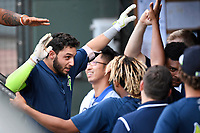 Second baseman Michael Paez (3) of the Columbia Fireflies is greeted after hitting a home run in a game against the Greenville Drive on Thursday, June 15, 2017, at Fluor Field at the West End in Greenville, South Carolina. Columbia won, 7-2. (Tom Priddy/Four Seam Images)