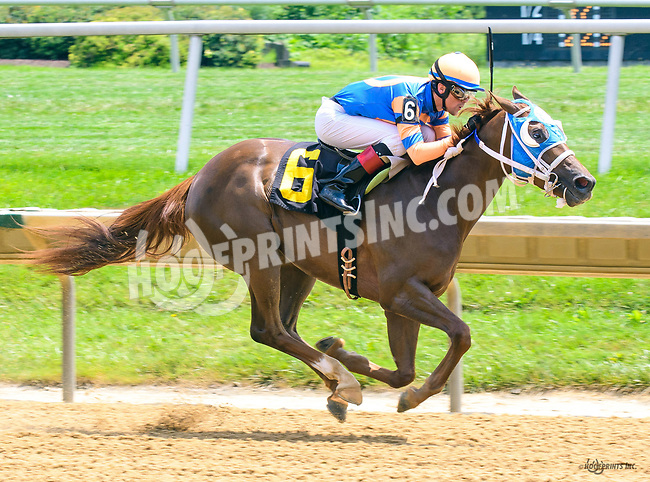 Analyzeyurspending winning at Delaware Park on 7/10/17
