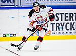 S&ouml;dert&auml;lje 2014-01-06 Ishockey Hockeyallsvenskan S&ouml;dert&auml;lje SK - Malm&ouml; Redhawks :  <br />  Malm&ouml; Redhawks Daniel Viksten <br /> (Foto: Kenta J&ouml;nsson) Nyckelord:  portr&auml;tt portrait
