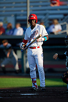 Auburn Doubledays Caldioli Sanfler (31) at bat during a NY-Penn League game against the West Virginia Black Bears on August 23, 2019 at Falcon Park in Auburn, New York.  West Virginia defeated Auburn 8-1, the first game of a doubleheader.  (Mike Janes/Four Seam Images)