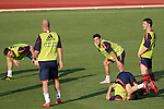 MADRID (24/05/09).- The Spanish Soccer national team has officially begun their hunt for the championship, arriving in the Madrid municipality of Las Rozas to begin preparing for South Africa World Cup.  Xabi Alonso, Jesus Navas, and David Villa...PHOTO: Cesar Cebolla / ALFAQUI