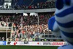 """10.04.2019, Schauinsland-Reisen-Arena, Duisburg, GER, 2. FBL, MSV Duisburg vs. 1. FC Koeln,<br />  <br /> DFL regulations prohibit any use of photographs as image sequences and/or quasi-video<br /> <br /> im Bild / picture shows: <br /> MSV Maskottchen """"Ennatz"""" ( MSV Duisburg),  und im Hintergrund koelner Fans<br /> <br /> Foto © nordphoto / Meuter"""