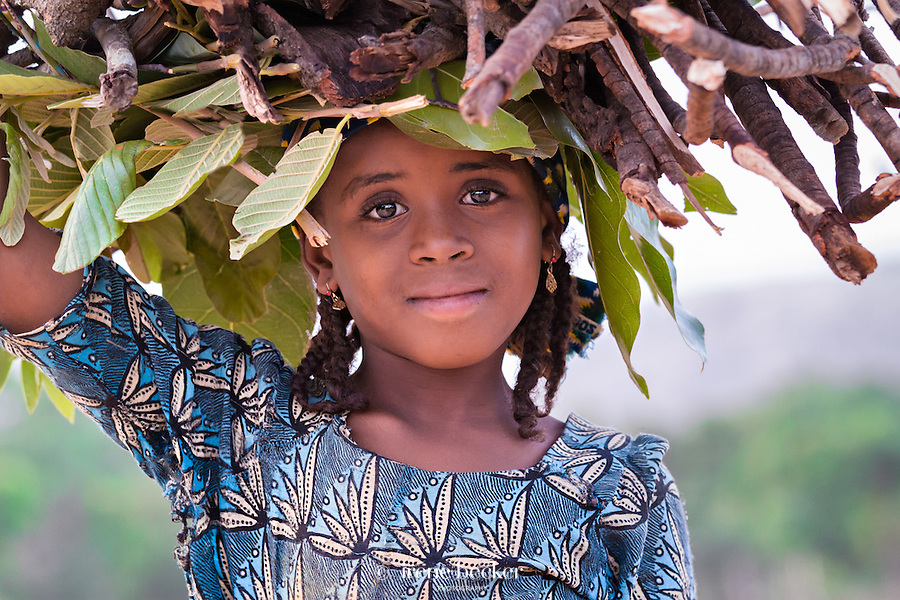 Little fulani girl collecting firewood