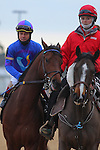 January 18, 2016: Jockey Jon Court aboard #6 Discreetness before the running of the Smarty Jones Stakes at Oaklawn Park in Hot Springs, AR. Justin Manning/ESW/CSM