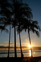 The sun sets behind palm trees on Waikiki Beach on Oahu